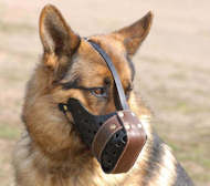"Leather Dog Muzzle ""Dondi plus"" for German Shepherd"